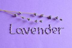 Torr lavendel blommar med text Arkivfoto