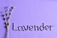 Torr lavendel blommar med text Arkivbild