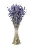 Torr lavendelbukett som isoleras på vit bakgrund royaltyfri fotografi