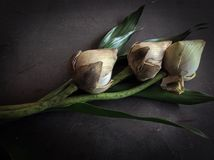 torr lotusblomma Royaltyfri Foto