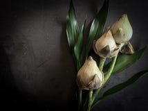torr lotusblomma Arkivbilder