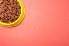 Torr mat i bunkar för husdjur på röd bakgrund royaltyfri bild