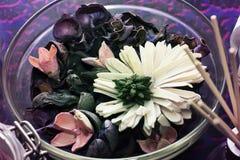 Torr och blom- teservis i en bunke royaltyfri bild