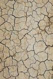 Torr och sprucken jord Arkivfoton