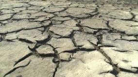 Torr och sprucken jordning för öken lager videofilmer