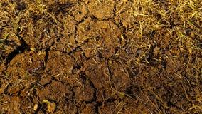 Torr och sprucken jordtextur Arkivfoton