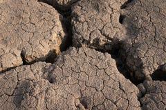 Torr och sprucken jordtextur Global klimatförändring Fotografering för Bildbyråer