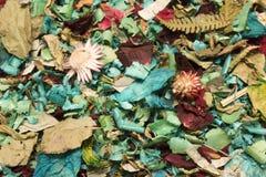 torr petal för bakgrund arkivbilder