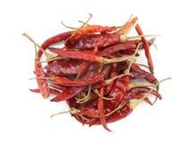 Torr röd chili på isolatvitbakgrund Arkivbild