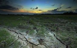 Torr risfält och solnedgång Royaltyfria Bilder