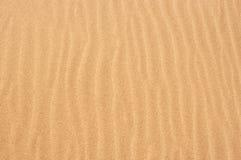 torr sand Royaltyfri Fotografi