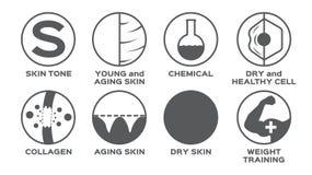 Torr sund utbildning för hudsymbolsuppsättning/för vikt för cell för ung kemikalie för signal stock illustrationer