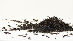 torr tea Royaltyfri Foto