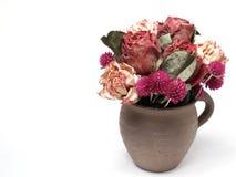 torra blommor för garnering Arkivbilder