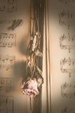 Torra blommor för tappning på musik Royaltyfri Bild