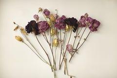 Torra blommor på den vita tabellen Royaltyfria Foton