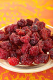 Torra cranberries Royaltyfria Foton