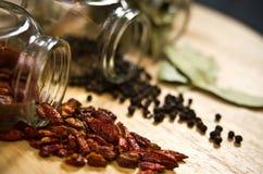 torra kryddor Royaltyfri Fotografi