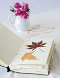 torra leaves för bok Royaltyfri Bild