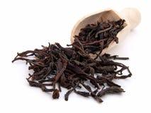 Torra leaves för svart tea Fotografering för Bildbyråer