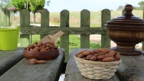 Torra organiska mandlar i natur stock video