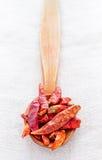 Torra peppar i träsked Fotografering för Bildbyråer