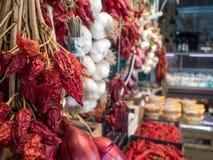 Torra peppar och vitlök för varm chili royaltyfria bilder