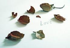 torra petals steg Arkivbilder