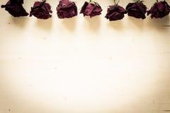 torra ro Royaltyfri Fotografi