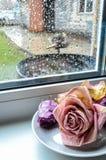 Torra rosor på ett tefat arkivbild
