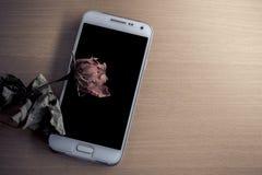 Torra rosor på tabellen med en mobil fotografering för bildbyråer