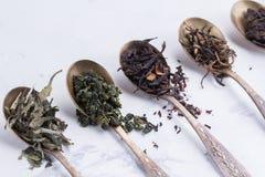 Torra sidor av olika sorter av te i antika skedar på en vit bakgrund Royaltyfri Bild