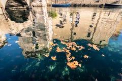 Torra sidor som svävar på vatten som reflekterar en gammal scaligero, rockerar Fotografering för Bildbyråer