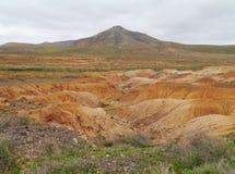 Torra små viker och flodsängar nära La Oliva på Fuerteventura Royaltyfri Bild
