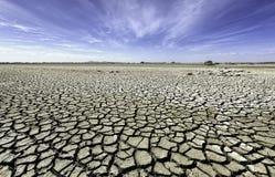 Torra spruckna slättar av vildmark Australien Royaltyfri Bild