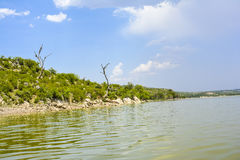 Torra träd vid Khabeki sjön, snart dal Arkivbilder