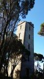 Torre abandonada Austrália da baleação imagem de stock