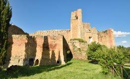 Torre aldebrandesca Obrazy Royalty Free