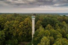 Torre alta dell'orologio nella foresta Fotografia Stock