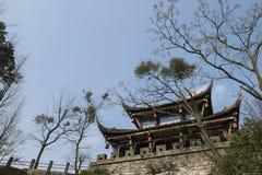 Torre antica del portone Fotografia Stock