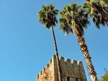 Torre antica della fortezza e palme alte Fotografie Stock Libere da Diritti