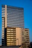 Torre Bucarest una di Globalworth Immagini Stock Libere da Diritti