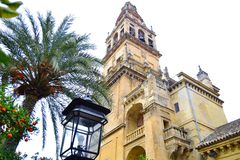 Torre campanario. Bell tower of the Mosque of Cordoba, from the Patio de los Naranjos, place strewn with aromatic orange and splendid palm trees Stock Photos
