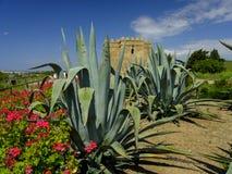 Torre Castillo de dona Blanca e giardini fotografia stock libera da diritti