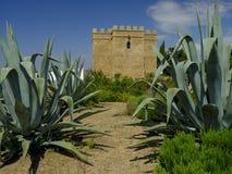 Torre Castillo de dona Blanca e giardini fotografie stock libere da diritti