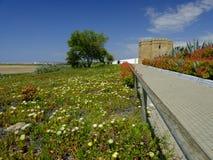 Torre Castillo de dona Blanca e giardini immagini stock libere da diritti