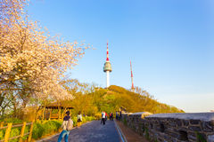 Torre Cherry Blossom Tourists Wall Seoul de Namsan Fotografía de archivo libre de regalías