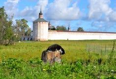 Torre da fortaleza do monastério de Kirillo-Belozersky no dia Imagem de Stock Royalty Free