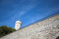 Torre da fortaleza em Tallinn Estónia Imagem de Stock
