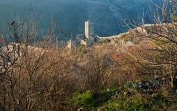 Torre da fortaleza histórica atrás da romã dos arbustos Fotos de Stock